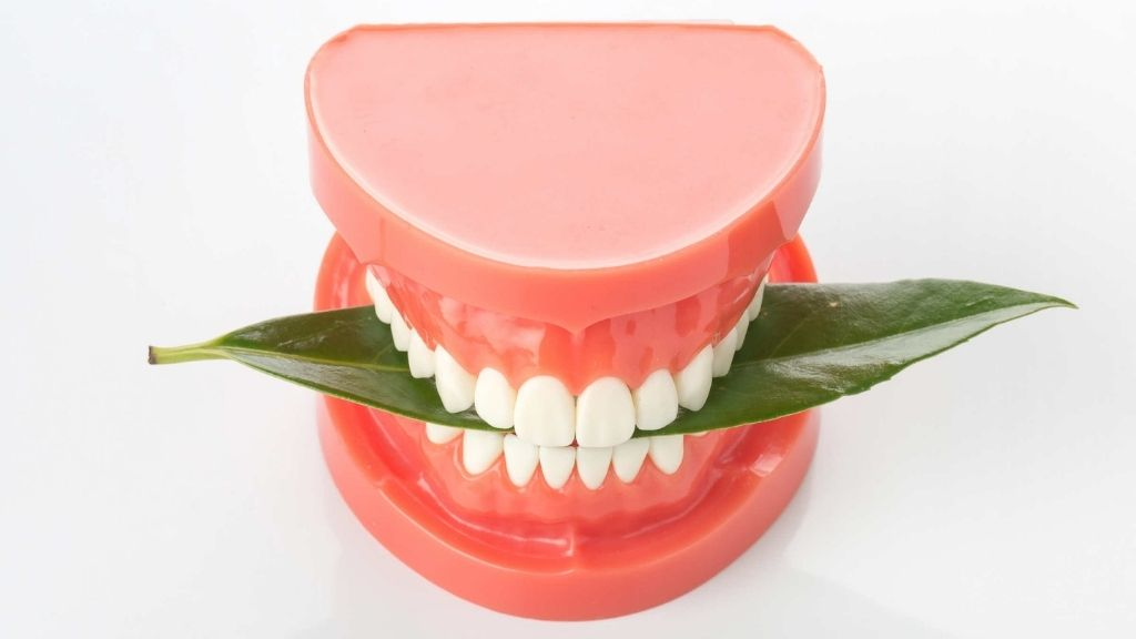 Holistic approach to dentures in Cleveland Solon